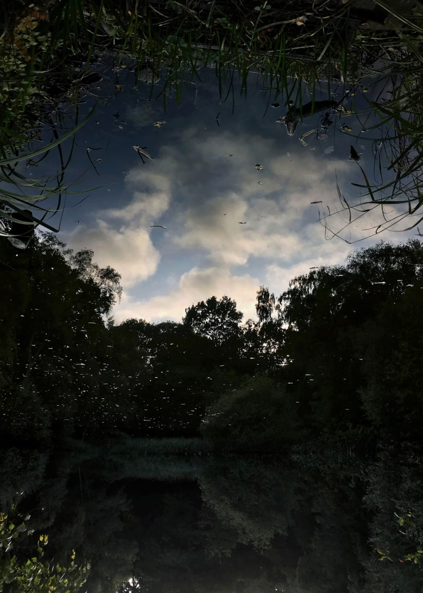 Clouds in Dark Pond, from the series Pond (2019)