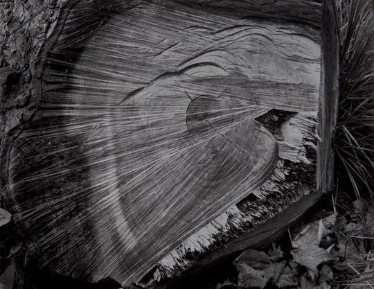 'Premonitions' (1970s)